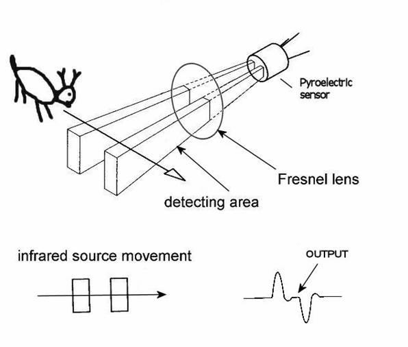 热释电红外探测器原理图